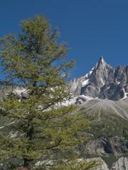 Chamonix, Monte Bianco