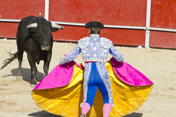 Foto op Canvas Stierenvechten Matador and bull in bullfight. Madrid, Spain.