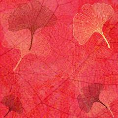 Wall Mural - Fond Feuillage et Feuilles Ginkgo en Rouge - Illustration
