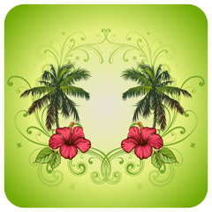 Floral frame. Hibiscus, palms, scrolls.