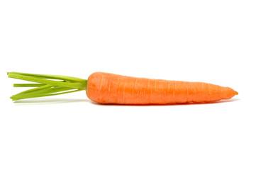 Carrot on White