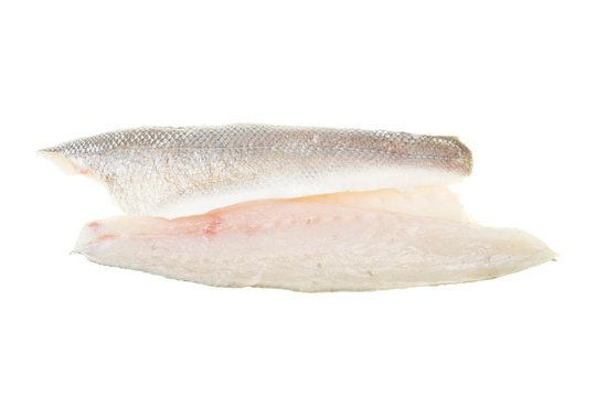 Sea bass fish fillets