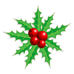 Christmas holly isolated over white square background