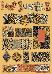 I love jungle - frames and labels wild animal patterns