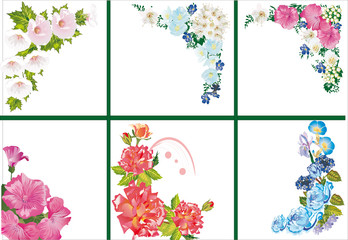 six floral corners on white