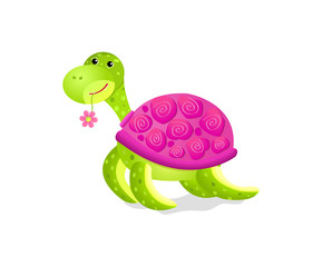 cute turtle toy