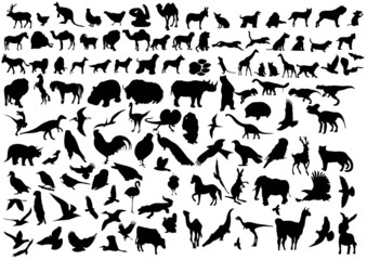 wild animal silhouttes