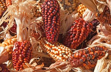 Decorative corn