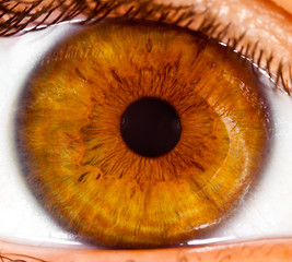 Photo sur Toile Iris Human eye close up ...
