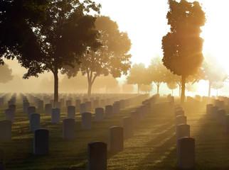 Cemetery in the Fog