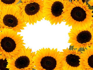 sunflowers - yellow frame (with place for your text)