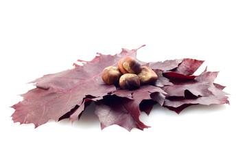 Herbstblätter und Kastanien