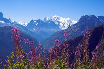Obraz Mont Blanc - fototapety do salonu