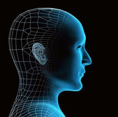 Transparent human head