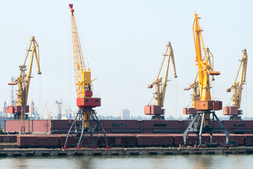 Trading port with cranes, containers and cargoes