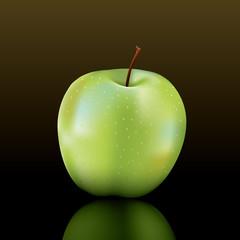 vector granny smith apple