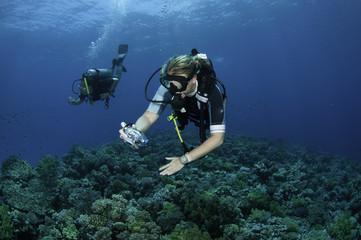 scuba diver takes photo