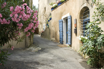 French Village Street view Flower Provence France