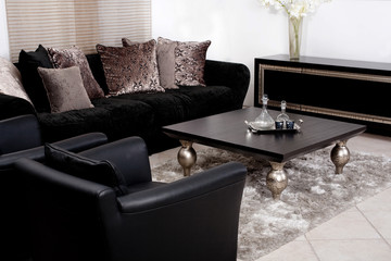 Contemporary sofa in modern living room