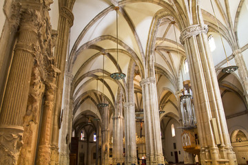 Cathedral nave, a space with Gothic-style columns