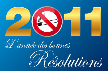 2011_Annee_Resolutions