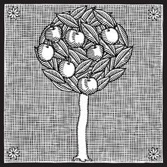 apple tree woodcut