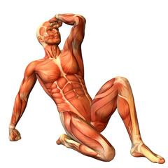Wall Mural - Muskelaufbau Mann in sitzender Pose