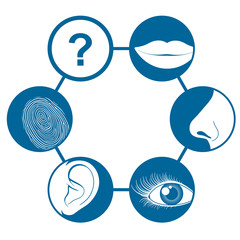 Six senses icons