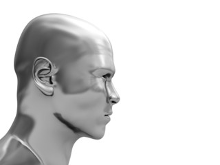steel head