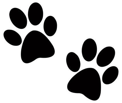 Black paw prints
