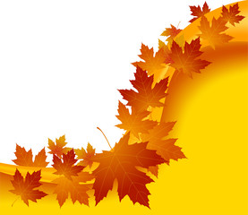 Vector autumnal concept background