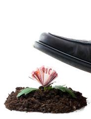 Wachstum und Stagnation