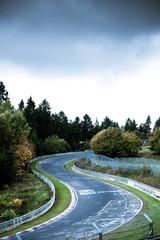 Wall Mural - race circuit