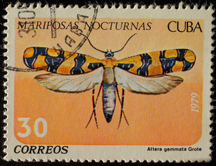 Марка почтовая с изображением флоры и фауны