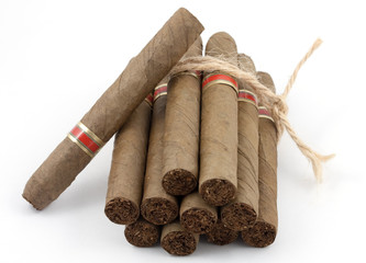Bundle of Dutch Cigars