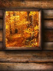 Autumn landscape view through a pine window