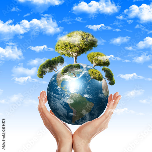environmental impact on healing essay