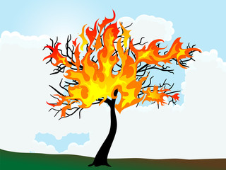 Wall Mural - Burning tree