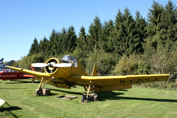 Sportflugzeug Tiefdecker