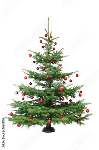 rot geschm ckter weihnachtsbaum stockfotos und lizenzfreie bilder auf bild 26689196. Black Bedroom Furniture Sets. Home Design Ideas