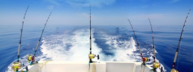 Aluminium Prints Fishing boat fishing trolling panoramic rod and reels blue sea
