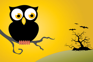 Halloween Owl Background