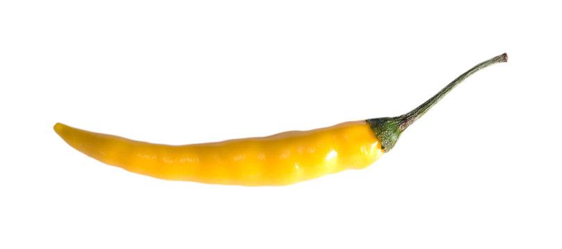 yellow chili pepper