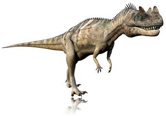 ceratosaurus side walk reflection