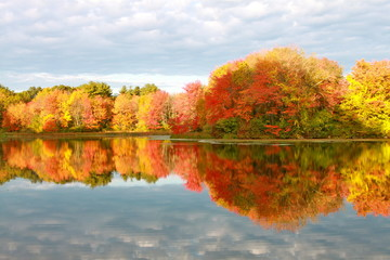 Autumn Reflection III