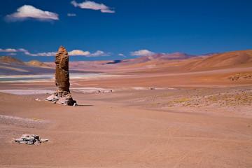 monolith close to Salar Aguas Calientes and Cerro Losloyo Wall mural