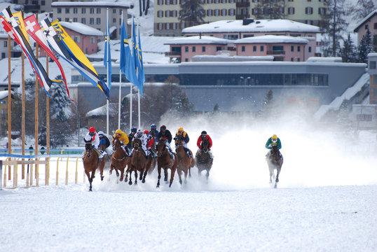 White Turf Pferderennen in St. Moritz, St. Gallen, Schweiz