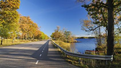 Autumn road next to the lake