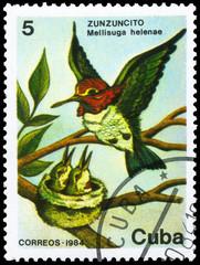 CUBA - CIRCA 1984 Hummingbird