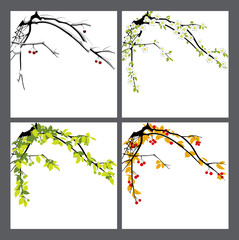 Apple-tree. Seasons.